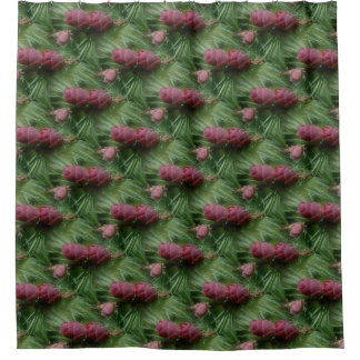 Miniature Pine Cones Nature Pattern Shower Curtain