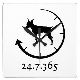 Miniature Pinscher Square Wall Clocks