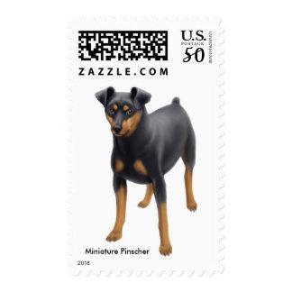 Miniature Pinscher Dog Postage