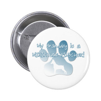 Miniature Pinscher Granddog Pinback Button