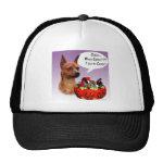 Miniature Pinscher Halloween Candy Mesh Hat