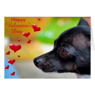 Miniature Pinscher Happy Valentine's Day Card