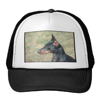 Miniature Pinscher Mesh Hat