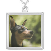Miniature Pinscher (Min-Pin) 2 Silver Plated Necklace