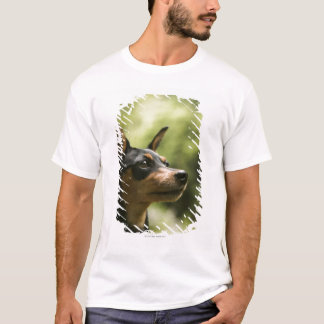 Miniature Pinscher (Min-Pin) 2 T-Shirt