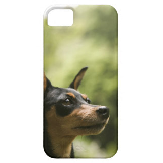 Miniature Pinscher (Min-Pin) iPhone SE/5/5s Case