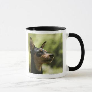 Miniature Pinscher (Min-Pin) Mug