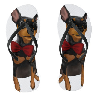 Miniature Pinscher (Min Pin) with Bow Flip Flops