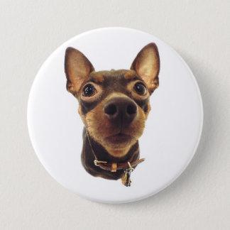 Miniature Pinscher Pin Button