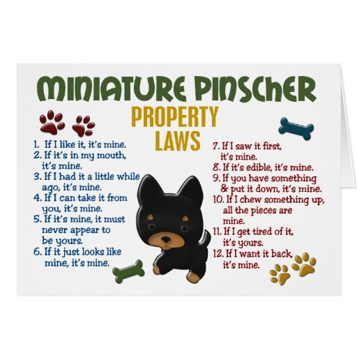 Miniature Pinscher Property Laws 4 Card