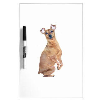 Miniature Pinscher (red) Dry-Erase Whiteboard