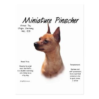 Miniature Pinscher (red) History Design Postcard