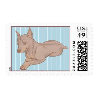 Miniature Pinscher Stamp