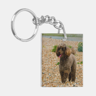 Miniature Poodle dog at the beach beautiful photo Keychain