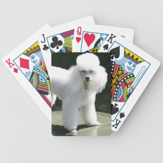 Miniature Poodle White Playing Cards