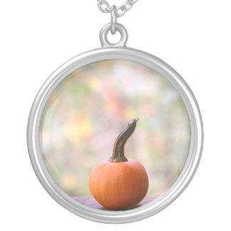 Miniature Pumpkin with Fall Colors Photo Necklace