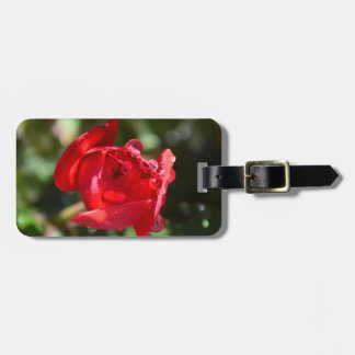 Miniature Red Rose Luggage Tag