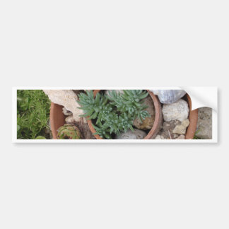 Miniature Rockery Bumper Sticker