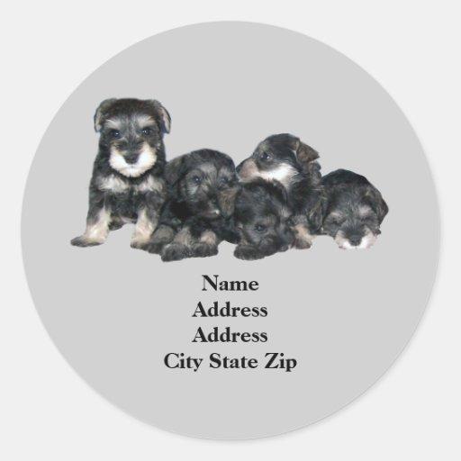 Miniature Schnauzer Address Label Stickers