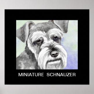 Miniature Schnauzer Art Poster