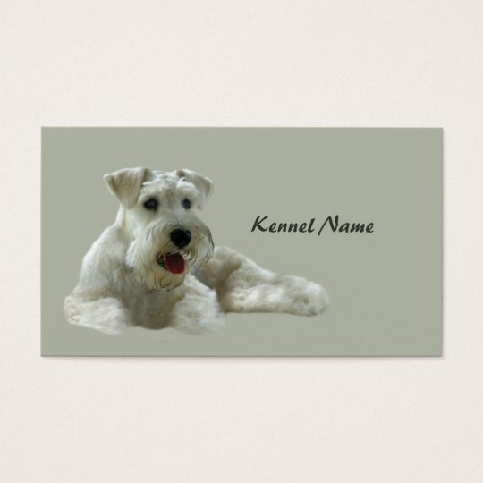 Miniature Schnauzer Breeder Business Card