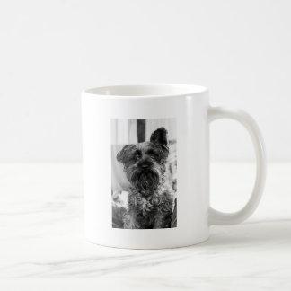 Miniature Schnauzer Coffee Mug