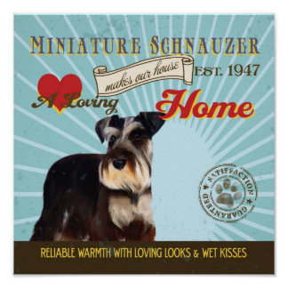 Miniature Schnauzer Dog Art Poster