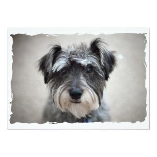 "Miniature Schnauzer Dog Invitation 5"" X 7"" Invitation Card"