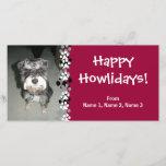 Miniature Schnauzer Photo Holiday Card
