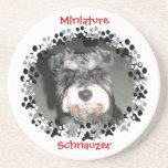Miniature Schnauzer Photo Sandstone Coaster