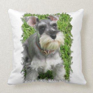 Miniature Schnauzer Pillow