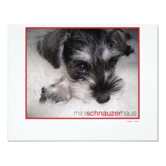 Miniature Schnauzer Pup Card