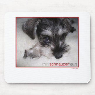 Miniature Schnauzer Pup Mouse Pads