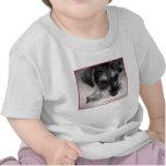 Miniature Schnauzer Pup Tshirts