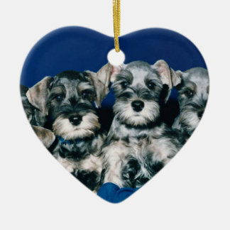 Miniature Schnauzer Puppies Ceramic Ornament