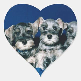 Miniature Schnauzer Puppies Heart Sticker