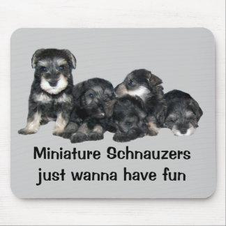 Miniature Schnauzer Puppies Mousepad