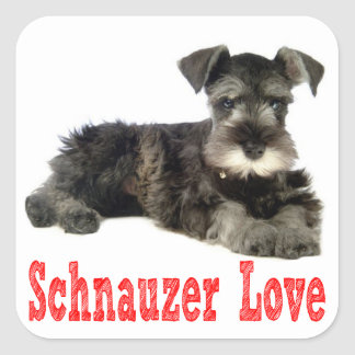 Miniature Schnauzer Puppy Dog Love Red Sticker