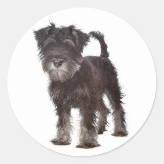 Miniature Schnauzer Puppy Dog Love Sticker