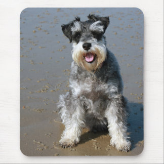 Miniature Schnauzer  Puppy Dog  Mouse Pad