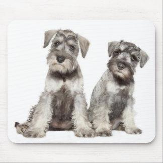 Miniature Schnauzer  Puppy Dog  Mouse Pad