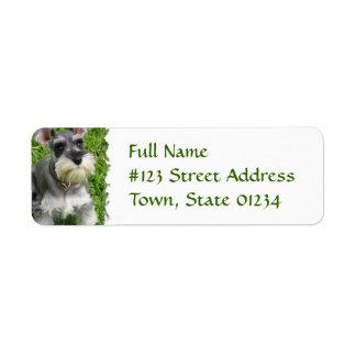 Miniature Schnauzer Return Address Label