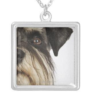Miniature Schnauzer, studio shot, close-up Square Pendant Necklace