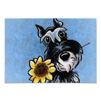 Miniature Schnauzer Sunflower Blue Off-Leash Art™ Poster