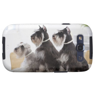 Miniature Schnauzers sitting at edge of table Galaxy S3 Cover