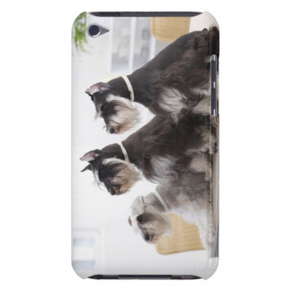 Miniature Schnauzers sitting at edge of table iPod Touch Case-Mate Case
