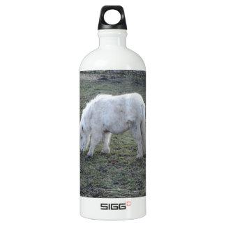 Miniature White Horse SIGG Traveler 1.0L Water Bottle