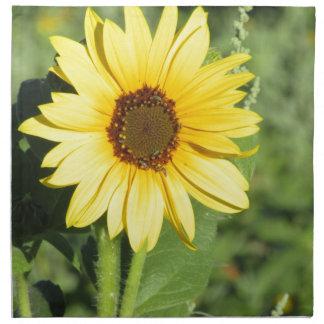 Miniature Wild Sunflower Bloom Napkins