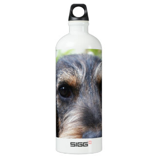 Miniature Wire Haired Dachshund SIGG Traveler 1.0L Water Bottle