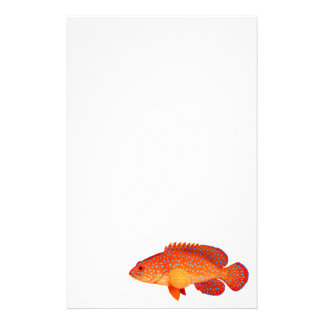 Miniatus Coral Grouper Fish Stationery